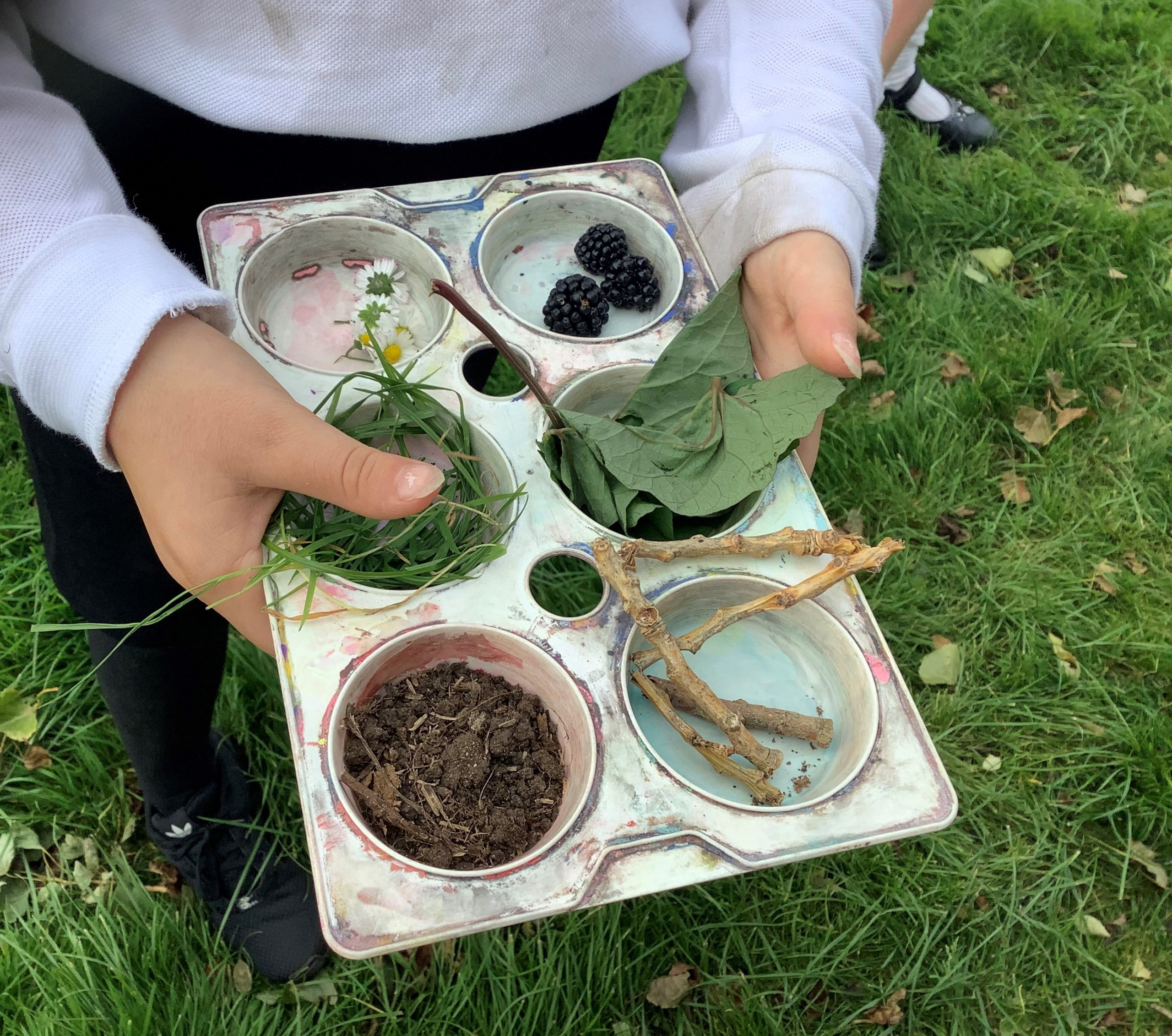 Y3 Gallery Creating a 'Prehistoric Palette' from foraging for natural inks/paints